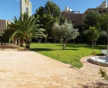 Benidorm,Alicante,España,3 Bedrooms Bedrooms,2 BathroomsBathrooms,Apartamentos,26785