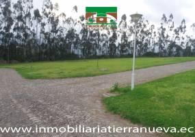 COTACACHI,IMBABURA,Ecuador,Lotes-Terrenos,3560