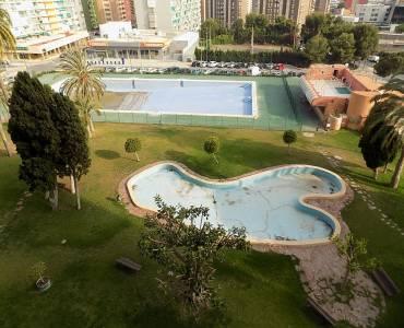 Benidorm,Alicante,España,1 Dormitorio Bedrooms,1 BañoBathrooms,Apartamentos,34555