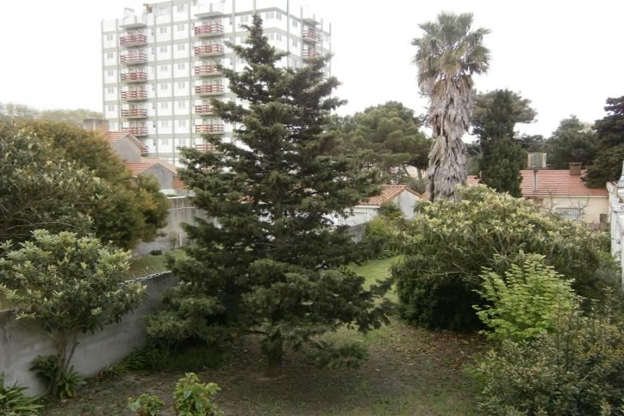 Santa Teresita, Buenos Aires, Argentina, 1 Dormitorio Bedrooms, ,1 BañoBathrooms,Apartamentos,Temporario,28,1,41091