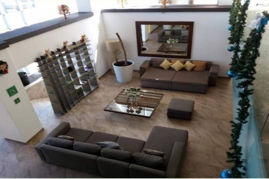 Coyoacán, Estado de Mexico, Mexico, 3 Habitaciones Habitaciones, ,2 BathroomsBathrooms,Apartamentos,Venta,42237