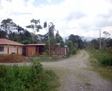 MORONA SANTIAGO, Ecuador, ,Lotes-Terrenos,Venta,6524