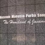 Menghidupkan Homo Erectus di Museum Sangiran