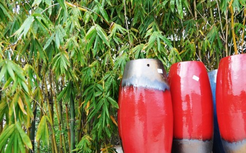In Addition to Pottery, there's a Bamboo Farm! Punta Gorda, Fla.