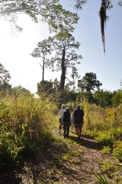 Hiking Wildflower Preserve, Cape Haze, Fla., Dec. 3, 2011
