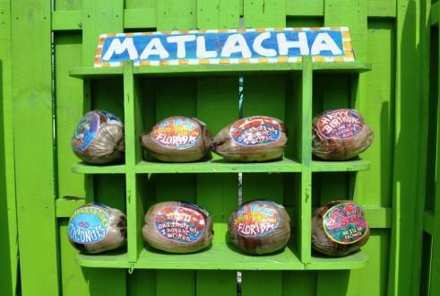 Why Mail a Postcard When You Can Send a Leoma Lovegrove Coconu
