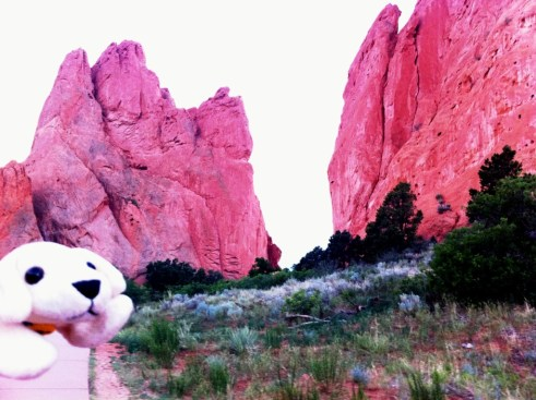 Field Trip to Amazing Garden of the Gods in Colorado Springs