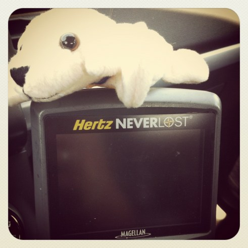 Hertz is Good, Real Good. They Knew the Driver is Navigationally Challenged.