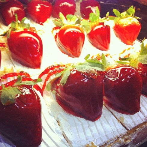 Join Wish Farms Charity Strawberry U-Pick April 6, 2013 and Make Something Tasty!