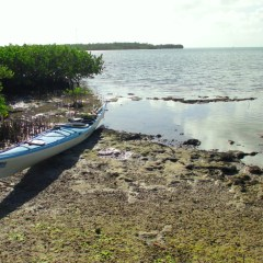 Paddling the Florida Keys with Burnham Guides