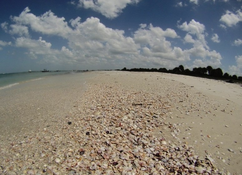 One of the Florida Places to Find Bliss - Caladesi Island State Park #IDreamofSummer