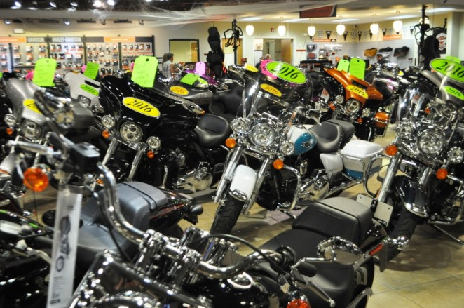 Live Wild. Live Free. Fulfill Your Dream at Bert's Black Widow Harley-Davidson, Port Charlotte, Fla.