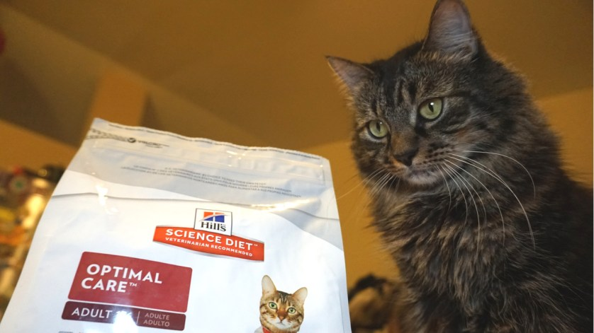 Remember to Pack Your Pet's Food in Your Pet Emergency Go-Kit.