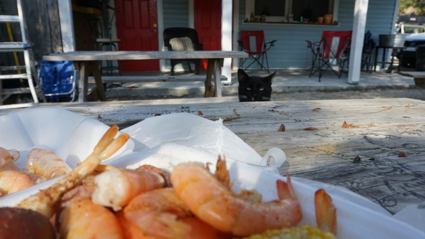 Low Country Boil Plate with Company at Skully's Low Country Boil, Cape San Blas, Fla