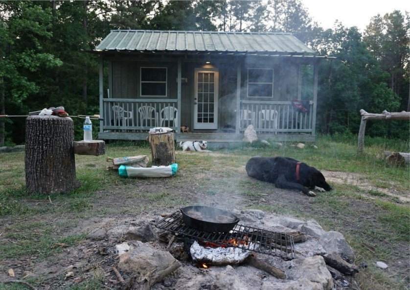 HipCamp Stay in South Carolina: Rosewood Rendezvous Tiny Cabin in Winnsboro
