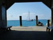 gulf coast 031