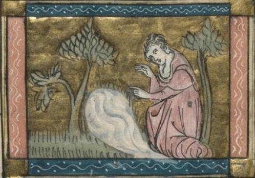 Narcisse se mirant dans la fontaine, enluminure du H246 - roman illustré du Roman de la Rose