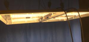 DBL SSX lit under