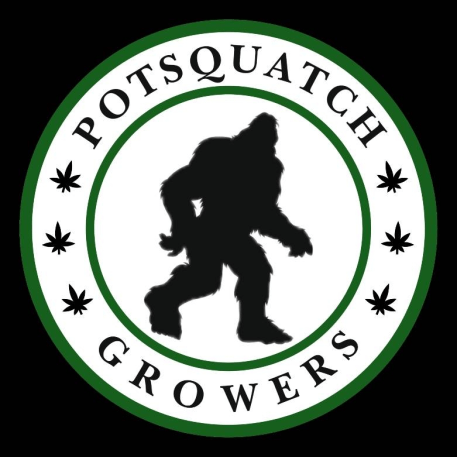 PotSquatch Lights