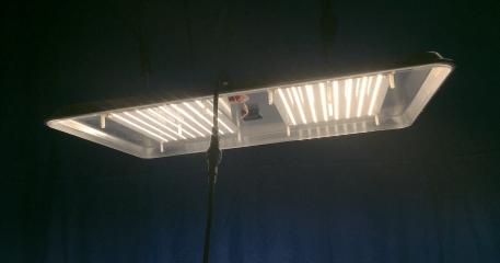 SSX X4 lit undershot