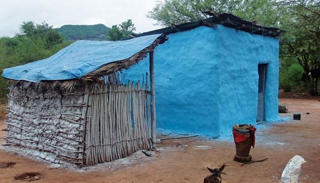 A house paint reduces bug borne diseases