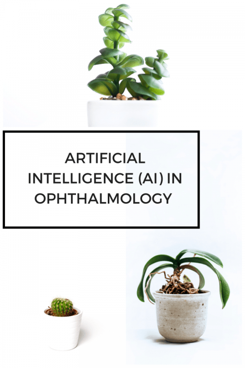 Artificial Intelligence (AI) in ophthalmology practice: Are Ophthalmologists ready ?