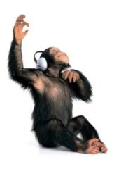 monkey-music1