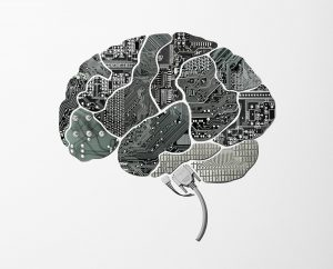 Plugged_in_Social_Science_Neuroscience_Imaging_Human_Brain_Project