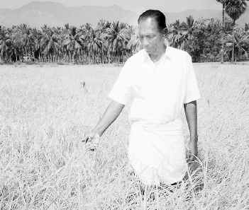 P_Gomathi_nayagam_Organic_Farming_Agriculturist