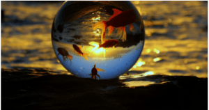 Globe_Gold_Fish_Round_World_Earth_View_Water_Goldfishes