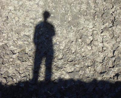 chp-shadow