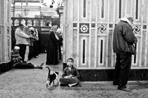 EGYPT. Cairo.December 2013. Men pray at the Saida Zainab mosque in downtown Cairo.
