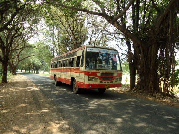 tamilnadu_bus