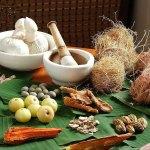 நீங்கள் டொக்டரா அல்லது நான் டொக்டரா: மருத்துவர்களும் மாற்றுக் கற்பனைகளும்