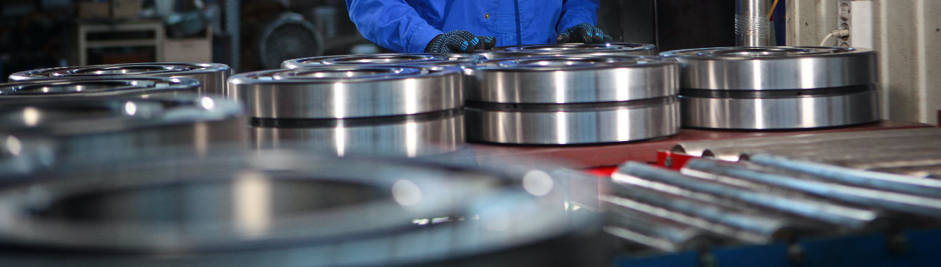 Inspecting large bearings