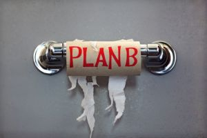 An empty toilet paper roll with Plan B written on it. Time to try a soy alternative.