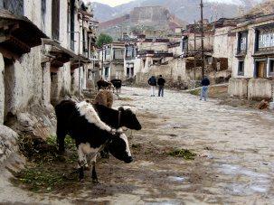 Gyantse main street - Tibet