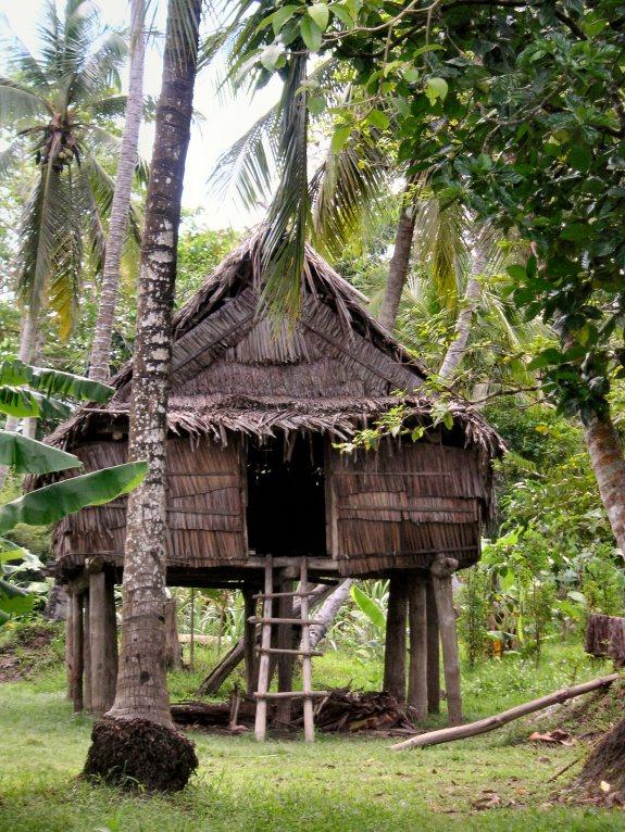Sepik village