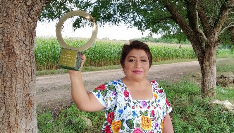 CAMPECHANA LEYDY PECH MARTÍN GANA PREMIO GOLDMAN 2020, EL NOBEL AMBIENTAL - Sol Yucatán