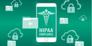 HIPAA Compliance IT Consultant