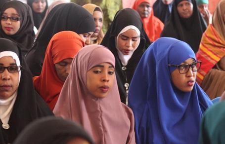 Somaliagenderhub.