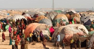 Somali families