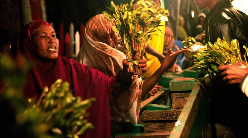 A woman holds a bunch of khat