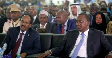 Somalia's President Mohamed Abdullahi Farmaajo and Kenya's President Uhuru Kenyatta listen to speeches during Farmaajo's inauguration ceremony in Somalia's capital Mogadishu [Feisal Omar/Reuters]