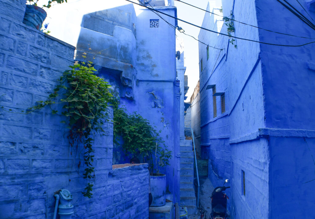 Blue houses, Jodhpur
