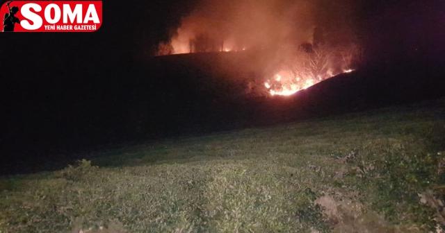 Soma'da orman yangını korkuttu