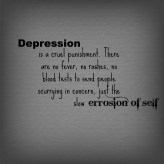 Depression is a cruel punishment. There are no fevers, no rashes, no blood tests to send people scurrying in concern. Just the slow errosion of self.