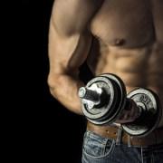 Krafttraining für Männer, Muskelkraft