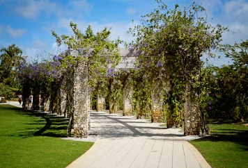 A beautiful path ath the Naples Botanical Garden.