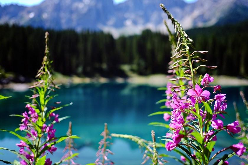 Favorite Solo Travel Destination South Tyrol